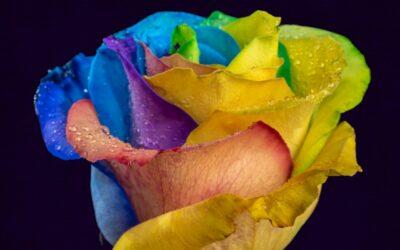 Sind Tye Dye, Dip Dye und Batik möglich?